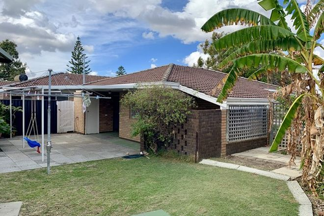 Picture of 38 Shelshaw Street, MELVILLE WA 6156