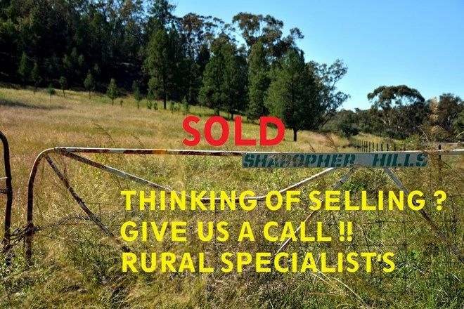 Picture of 303 Beames Rd, BEARBONG NSW 2827