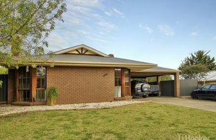 Picture of 13 Harnham Drive, Bairnsdale VIC 3875