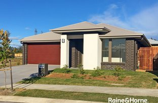 Picture of 17 Bignell Circuit, Greenbank QLD 4124