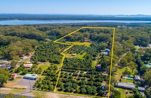 Picture of 3337 Nelson Bay Road, Bobs Farm NSW 2316