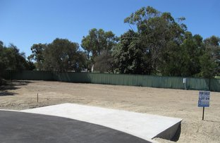 Picture of Lot 24, Myrtle Close, Goolwa North SA 5214