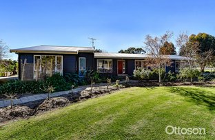 Picture of 175 Wrights Road, Naracoorte SA 5271