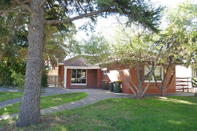 Picture of 11 Coolah Terrace, MARION SA 5043