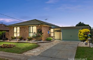 Picture of 3 Canberra Avenue, Hoppers Crossing VIC 3029