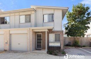 Picture of 38/33-35 Jellicoe Street, Loganlea QLD 4131