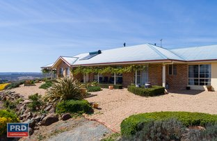 Picture of 5 Greenhill Lane, Bungendore NSW 2621
