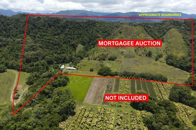 Picture of 48 Beatrice Rd, STEWART CREEK VALLEY QLD 4873
