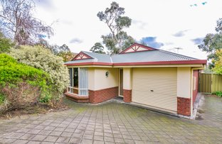 Picture of 6 Petrel Court, Flagstaff Hill SA 5159