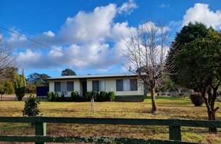 Picture of 5349 Strathbogie Road, Emmaville NSW 2371