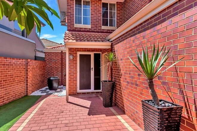 Picture of 58A Jugan Street, MOUNT HAWTHORN WA 6016