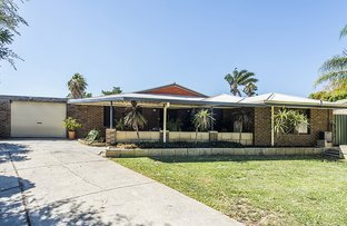 Picture of 7 Moennich Court, Coolbellup WA 6163