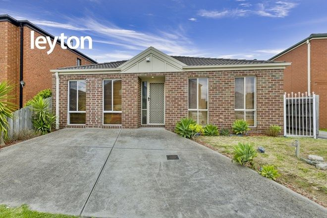Picture of 9 Ruby Place, SPRINGVALE VIC 3171