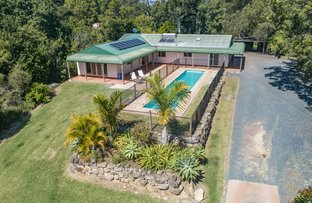 Picture of 177 Johnsons Road, Sandy Beach NSW 2456