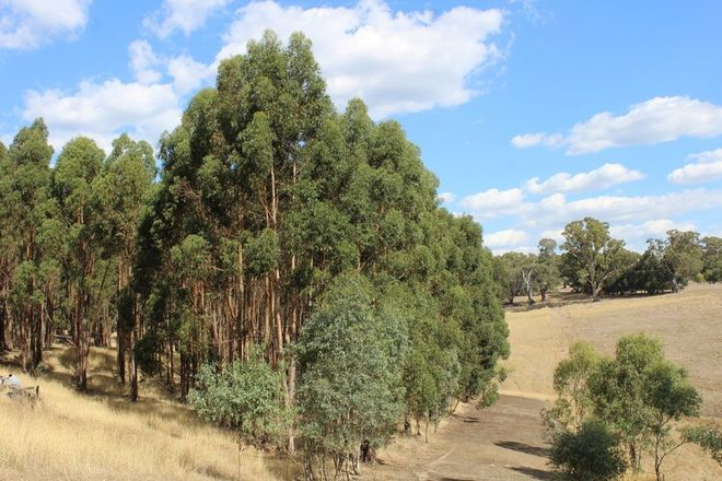 Picture of Tallengower Road, CHETWYND VIC 3312