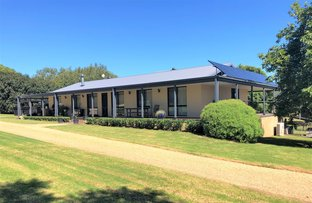Picture of 959 Wilson Road, Congarinni North NSW 2447