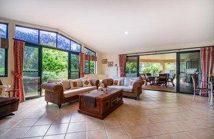 Picture of 16 Terrace Lea Court, Palmwoods QLD 4555
