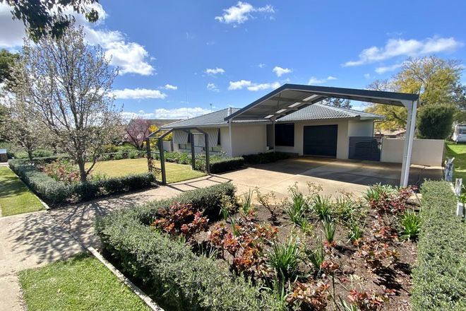 Picture of 12 Back Creek Road, YOUNG NSW 2594