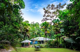 Picture of 3 Gregory Terrace, Kuranda QLD 4881