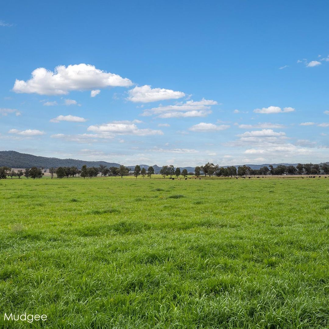 7458 Bylong Valley  Way, Mudgee NSW 2850, Image 1