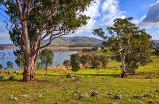 "Picture of ""Boxbourne"" River Road, Wymah NSW 2640"
