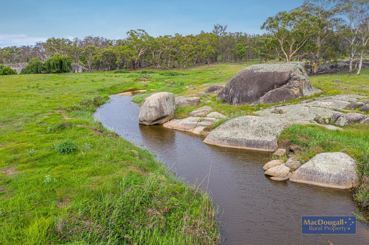 466 Balala Road, Uralla NSW 2358, Image 0