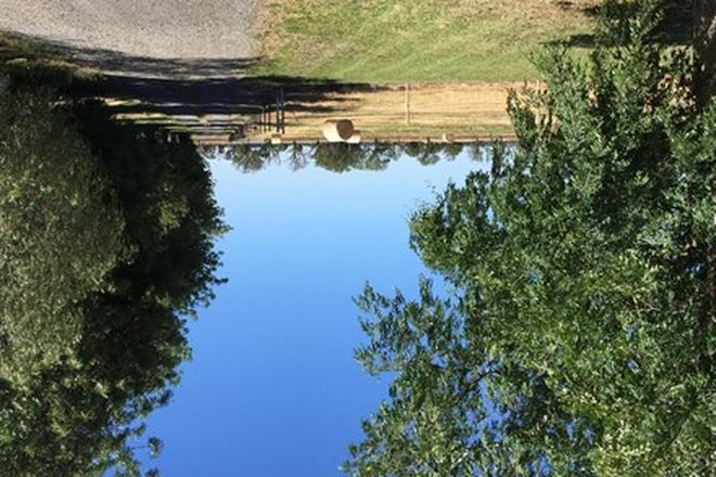Picture of Tambah, FINLEY NSW 2713