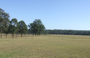 Picture of 140 Browns Rd, Halfway Creek NSW 2460