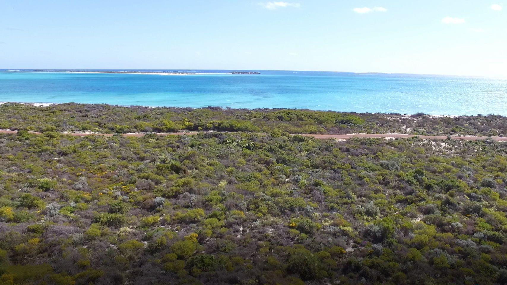 21 Eucalypt Way, Jurien Bay WA 6516, Image 1