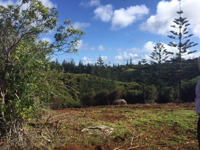 A/27 Tevarua Lane, Norfolk Island NSW 2899, Image 1