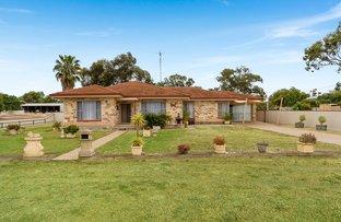 Picture of 2442 Jervois Road, Jervois SA 5259