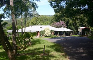 59 Old Brierfield Rd, Bellingen NSW 2454