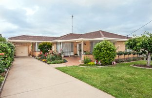 Picture of 4 Collins Street, Hamilton VIC 3300