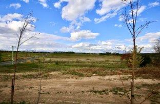 Picture of 567 Eleven Mile Drive, Eglinton NSW 2795
