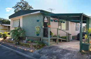 Picture of 183 Lady Penrhyn Drive, Kincumber NSW 2251