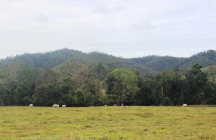 Picture of L53 Bruce Highway, Bloomsbury QLD 4799