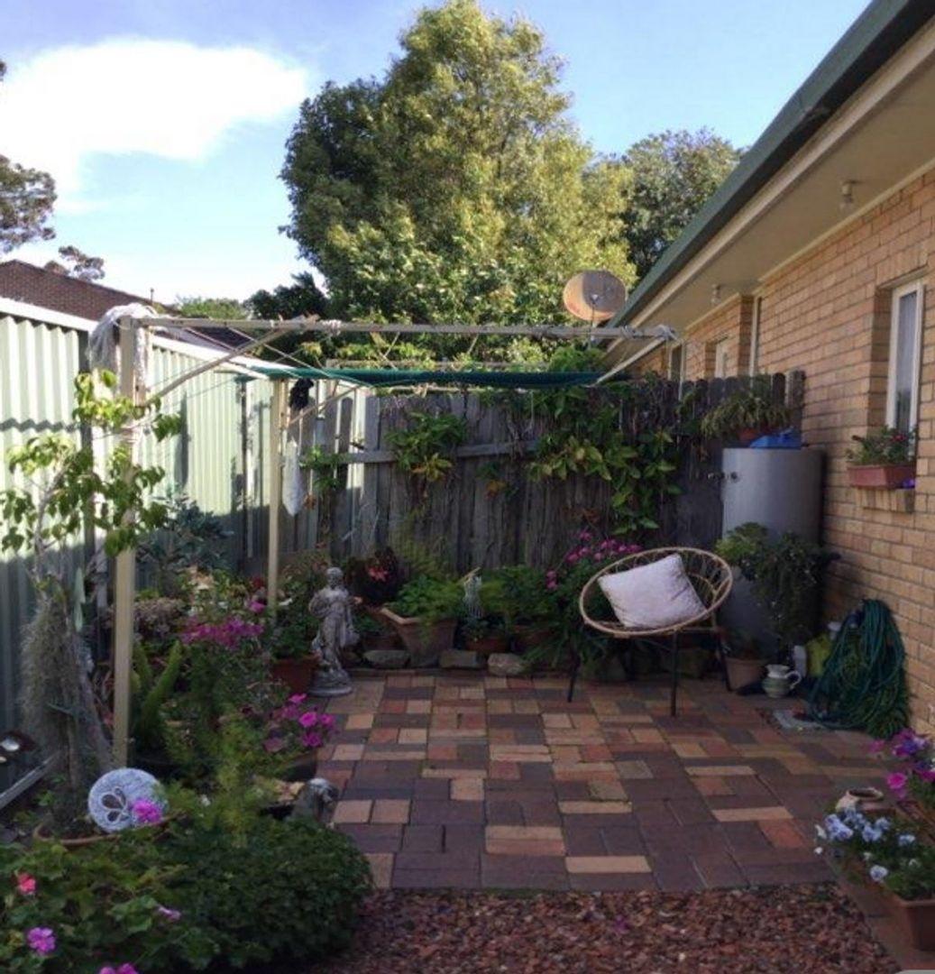 2/97 Thompson Street, East Maitland NSW 2323, Image 0