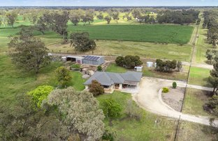 Picture of 207 Rowney Road, Mundulla SA 5270