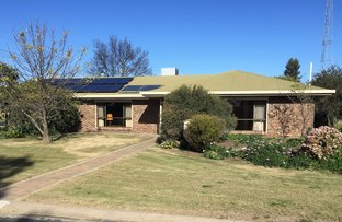 Picture of 18 Edward Street, Bordertown SA 5268