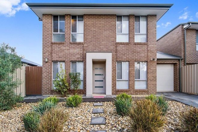 Picture of 8 Harcourt Terrace, MODBURY SA 5092
