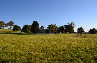 165 Laheys Creek Road, Dunedoo NSW 2844