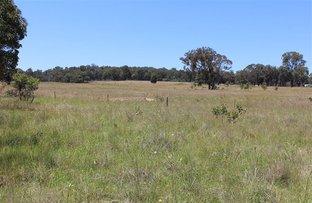Picture of 1301 Bundarra Road, Invergowrie NSW 2350