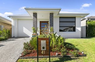 Picture of 41 Carey Street, Warner QLD 4500
