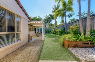 Picture of 5 Coolamon Court, Mooloolaba QLD 4557