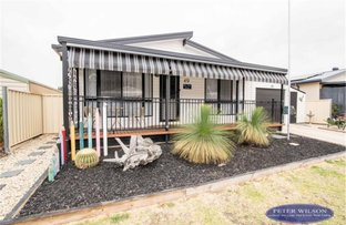 Picture of 49 Andre Street, Cobram VIC 3644