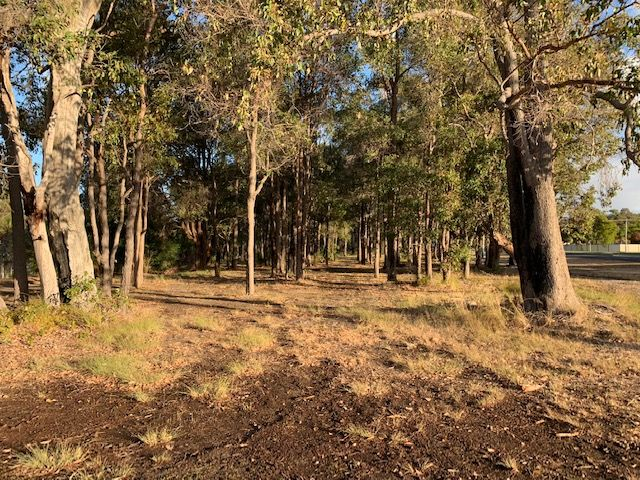 Lot 229 Steere St, Donnybrook WA 6239, Image 0