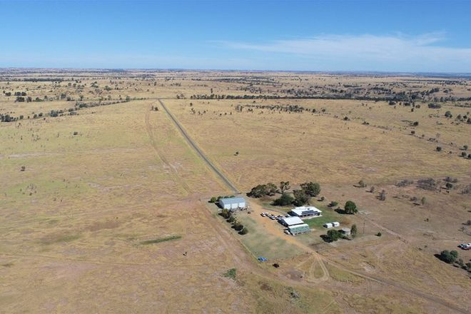 """Picture of 719 Injune/Taroom Rd """"Allbro Downs"""", INJUNE QLD 4454"""