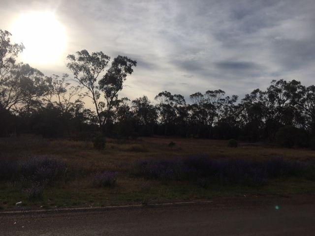 36 Barrier Highway, Hermidale NSW 2831, Image 1