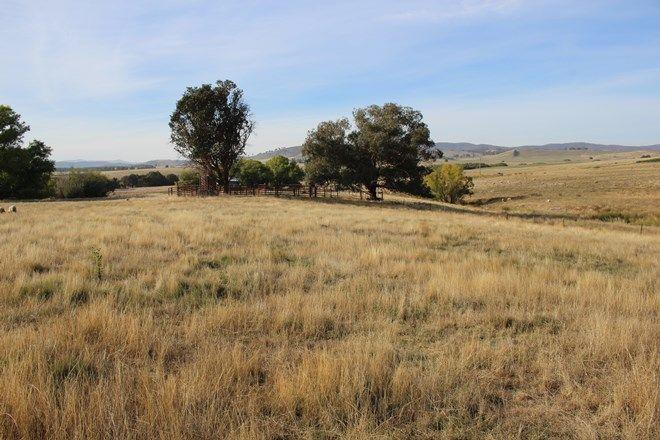 Picture of 3486 Jingellic Road, MANNUS NSW 2653