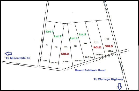 Lot 4 Mount Saltbush Road, Roma QLD 4455, Image 1